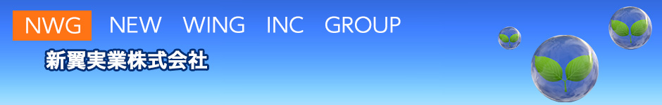 NWG  NEW WING INC GROUP
